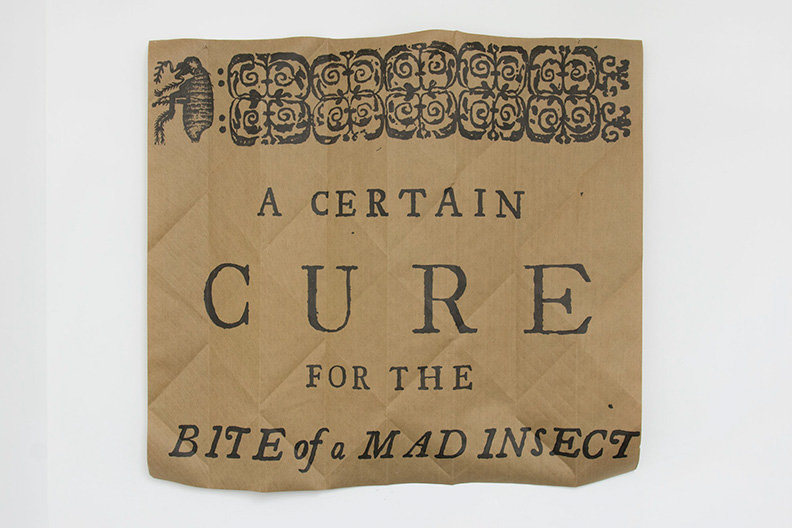 a_certain_cure_for_the_bite_of_a_mad_insect